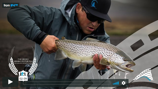 Trailer fly fishing for brown trout in iceland in the for International fly fishing film festival